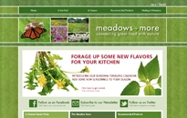 Meadows and More Website