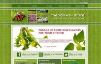 Meadows and More Home Page
