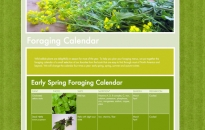 Meadows and More Foraging Calendar Page